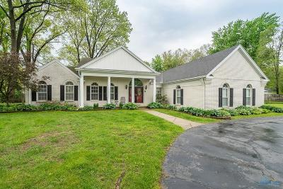 Sylvania Single Family Home For Sale: 4876 Olde Meadow Lane