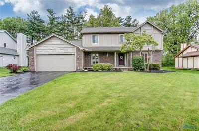 Perrysburg Single Family Home For Sale: 9600 St Andrews Road