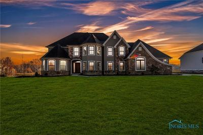 Perrysburg Single Family Home For Sale: 25970 Seminary Road
