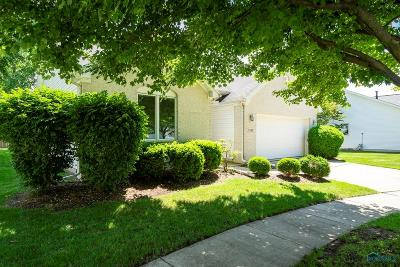 Sylvania OH Single Family Home Contingent: $169,900