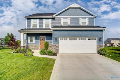 Sylvania Single Family Home Contingent: 8925 Red Hawk Court