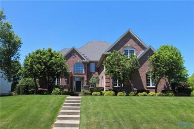 Perrysburg Single Family Home For Sale: 26299 Seminary Road