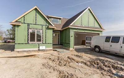 Sylvania Single Family Home For Sale: 5427 Country Ridge Lane