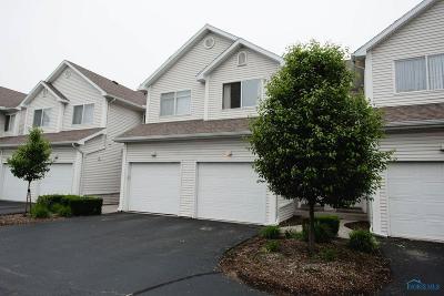 Toledo Condo/Townhouse For Sale: 2623 W Village Drive #2623