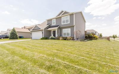 Perrysburg Single Family Home For Sale: 25219 Fox Hunt Drive