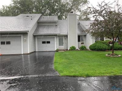 Toledo Condo/Townhouse For Sale: 6955 Dorr Street #19