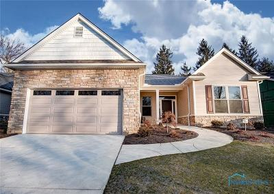 Toledo Single Family Home For Sale: 7532 King Acres Drive