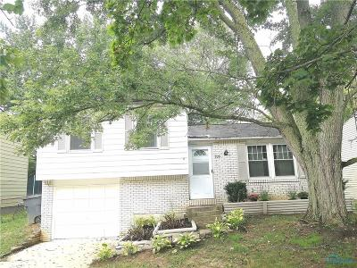 Toledo Single Family Home For Sale: 735 Southbriar Road