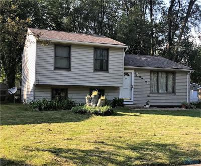 Whitehouse Single Family Home For Sale: 6918 Westwyck Drive