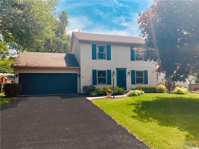Whitehouse Single Family Home For Sale: 6447 Oakbrook Drive