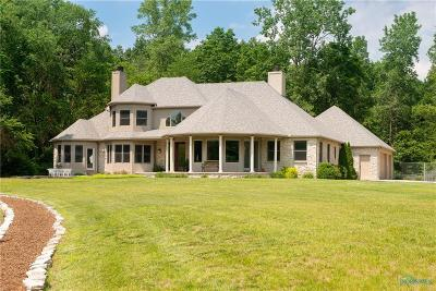 Holland Single Family Home For Sale: 7450 Angola Road