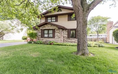Maumee Single Family Home Contingent: 6421 Antoinette Lane
