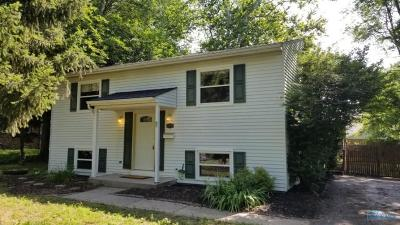 Toledo Single Family Home For Sale: 2404 Vaness Drive