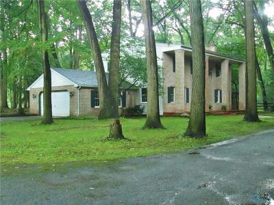 Whitehouse Single Family Home For Sale: 7515 Berridge Road