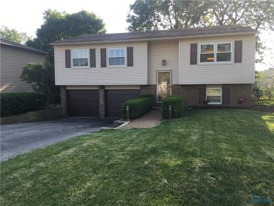 Perrysburg Single Family Home For Sale: 28735 Starbright Boulevard