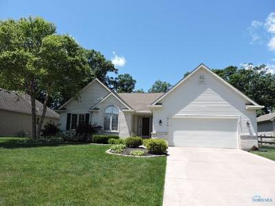 Holland Single Family Home For Sale: 8330 Water Park Drive