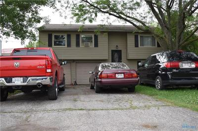 Perrysburg Single Family Home For Sale: 7328 Starlawn Road