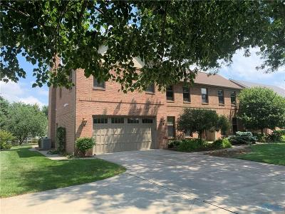Perrysburg Single Family Home For Sale: 27230 Fort Meigs Road