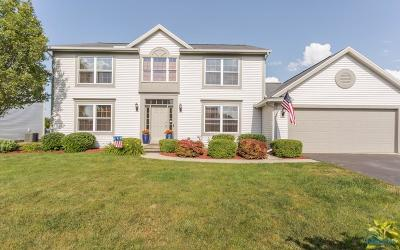 Perrysburg Single Family Home For Sale: 287 Twinbrook Drive