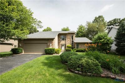 Holland Single Family Home For Sale: 9034 Orchard Lake Road
