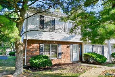 Perrysburg Condo/Townhouse For Sale: 19 Olde Orchard Drive