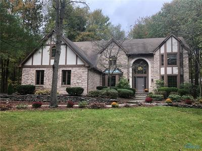 Whitehouse Single Family Home For Sale: 11370 Briarwood Lane
