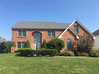 Sylvania Single Family Home Contingent: 9136 Blue Mirage Drive