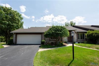 Perrysburg Condo/Townhouse For Sale: 10166 Ford Road