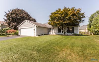 Sylvania Single Family Home Contingent: 3735 Farmbrook Drive