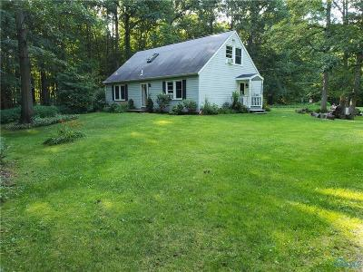 Whitehouse Single Family Home For Sale: 12530 Archbold Whitehouse Road