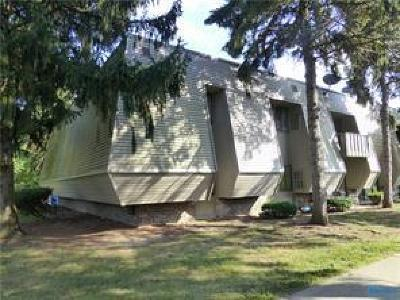 Maumee OH Condo/Townhouse For Sale: $69,900