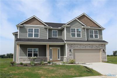 Sylvania Single Family Home For Sale: 9831 Coopers Hawk Court
