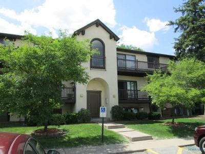 Toledo Condo/Townhouse For Sale: 1662 Brownstone #323