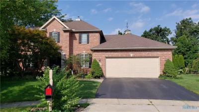 Sylvania Single Family Home For Sale: 9069 Cedar Berry Court