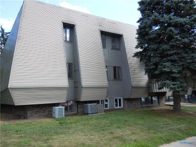 Maumee Condo/Townhouse For Sale: 6201 Garden Road #F89
