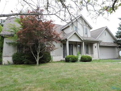 Holland Single Family Home For Sale: 2221 Old Hickory Lane