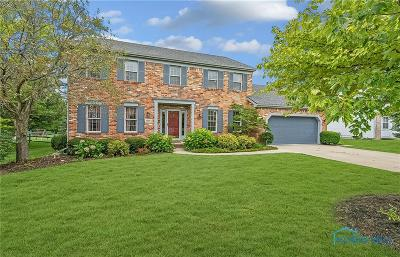 Perrysburg Single Family Home For Sale: 26964 Mingo Drive