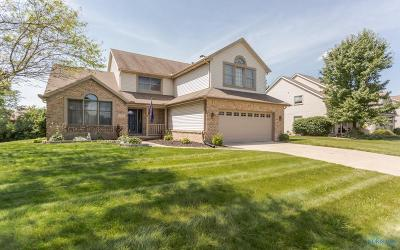 Sylvania Single Family Home For Sale: 5919 Apple Meadow Drive