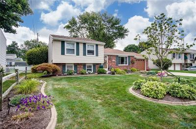 Toledo Single Family Home For Sale: 6168 Holliday Drive