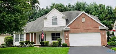 Sylvania Single Family Home For Sale: 8919 Sycamore Trail