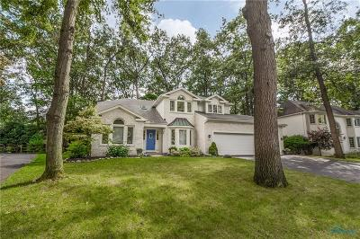Holland Single Family Home For Sale: 619 Kitlou Court