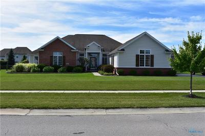 Monclova Single Family Home For Sale: 8529 Queensridge Drive