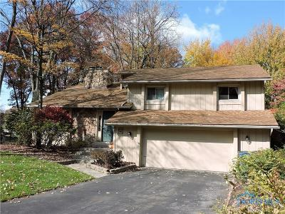 Sylvania Single Family Home For Sale: 4435 Candlewood Lane