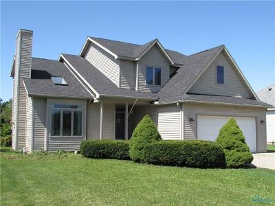 Grand Rapids Single Family Home For Sale: 17685 Sycamore Road
