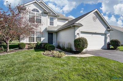Sylvania Single Family Home For Sale: 8938 Galloway Court