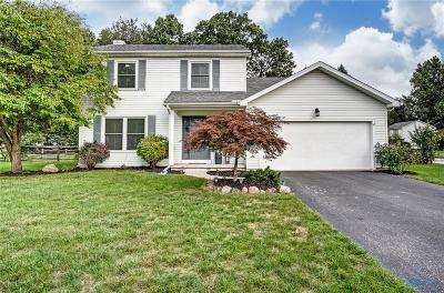 Holland Single Family Home Contingent: 7028 Sandy Hill Way