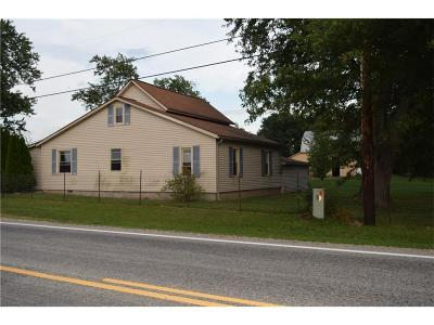 Single Family Home For Sale: 15783 State Route 49