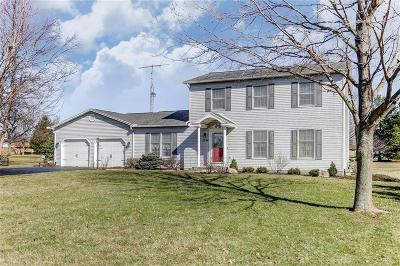 Springfield Single Family Home For Sale: 2796 Deer Run Road