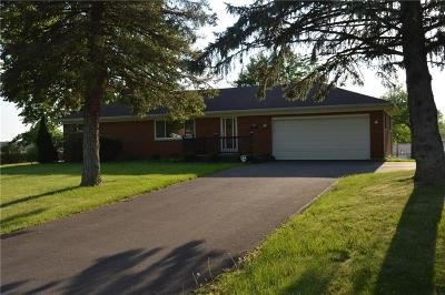 Springfield Single Family Home Contingency/Show: 2361 Erter Drive