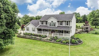 New Carlisle Single Family Home For Sale: 8095 Scarff